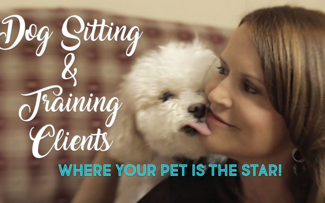 Dog Sitting & Training Clients
