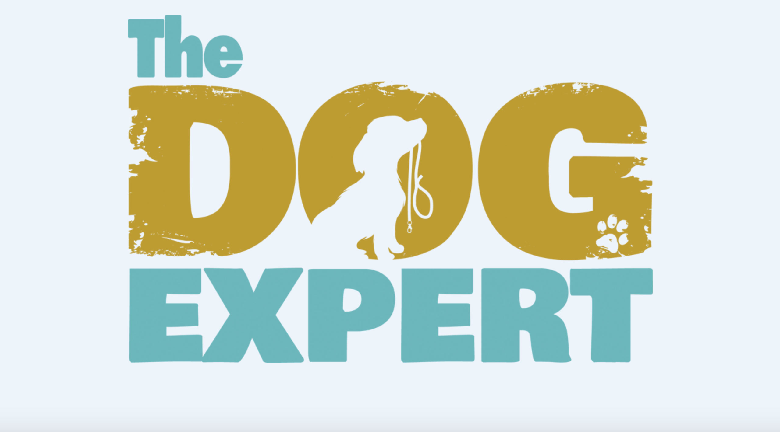 The Dog Expert